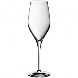 Champagner 29 Divine ungeeicht